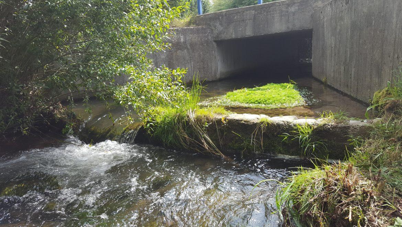 BLOG: Mýtus o tom ako sa ničí život v riekach
